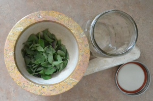 Basil, mortar and pestle and Mason jar at the ready.